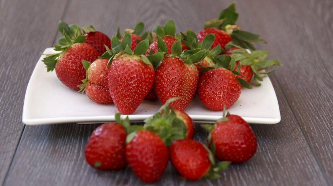 slider1_fresh_tree_breakfast_chef_summer_dish_strawberry_meadow-830682